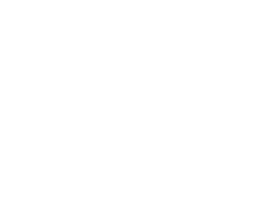 The VFX Mask